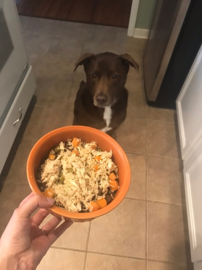 kermit food bowl