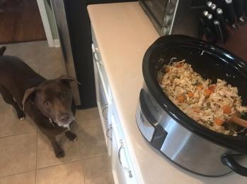 kermit waiting on food