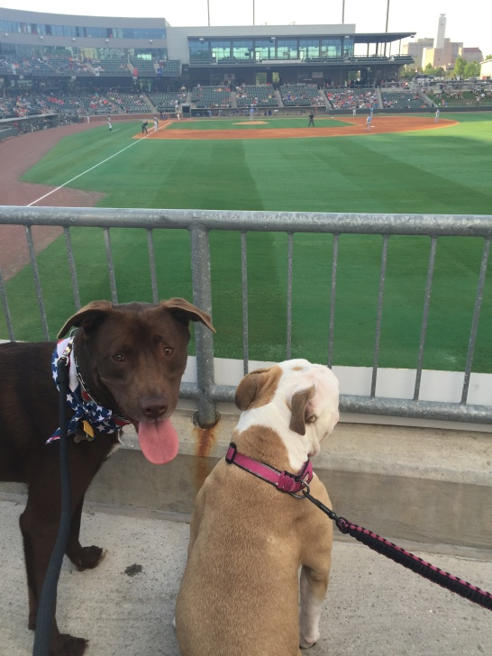 Kermit and his girlfriend, Hollie, watching a game.
